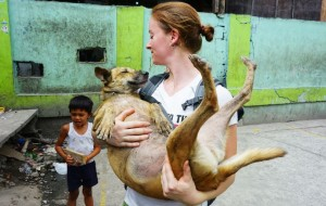dogs_rescue_pasay_1