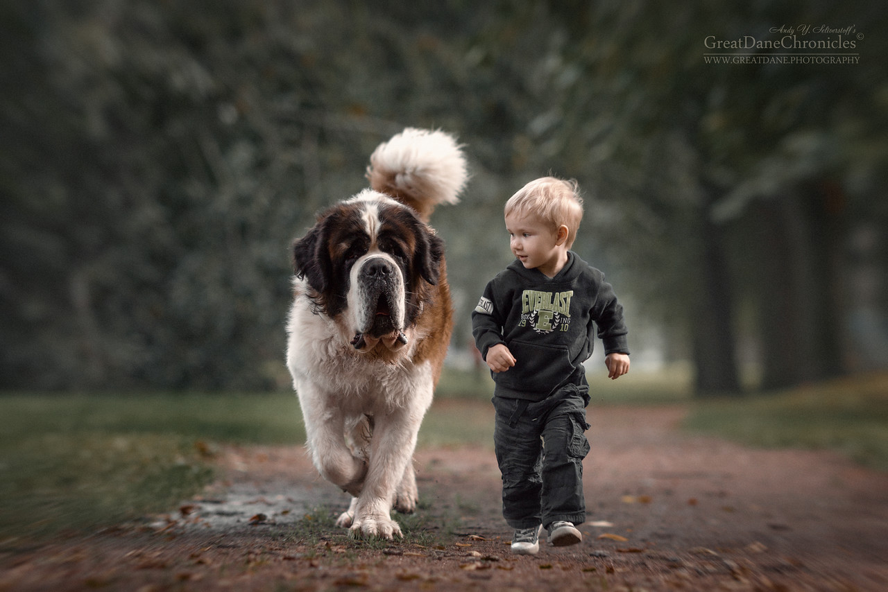 kids-dogs-funny-6