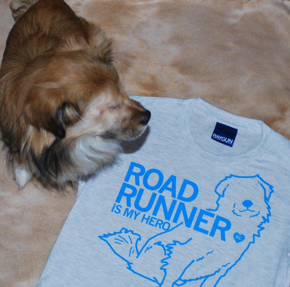 dog-roadrunner-abuse-5