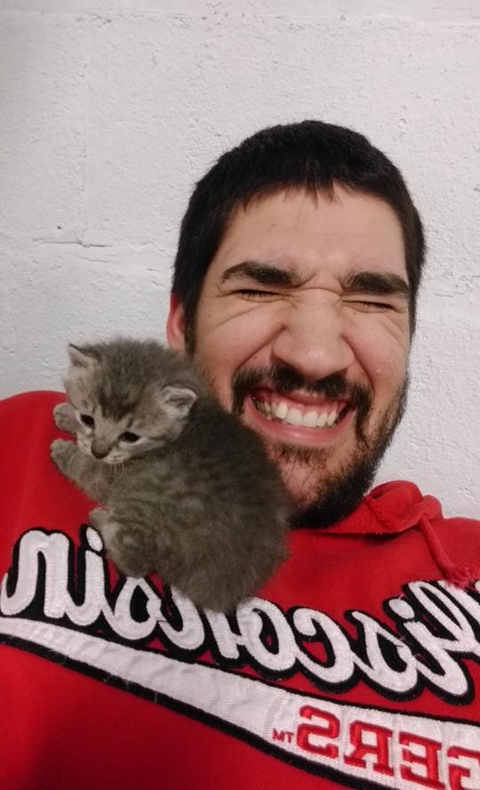 cats-rain-rescue-5