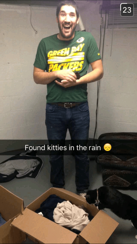cats-rain-rescue-9