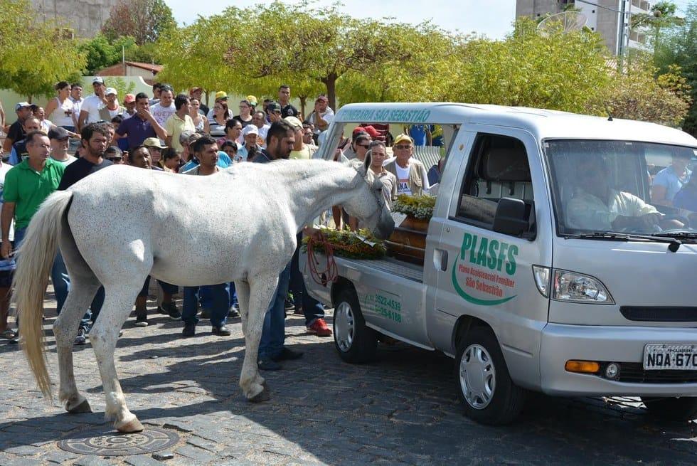 horse_sereno_funeral_14