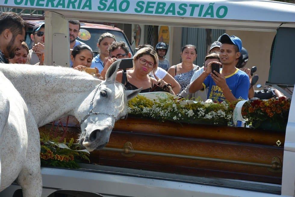 horse_sereno_funeral_2