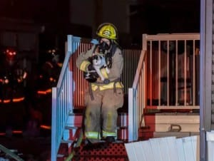 cat-fire-rescue-1