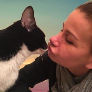 cat-valtentine-declaw-rescue-6