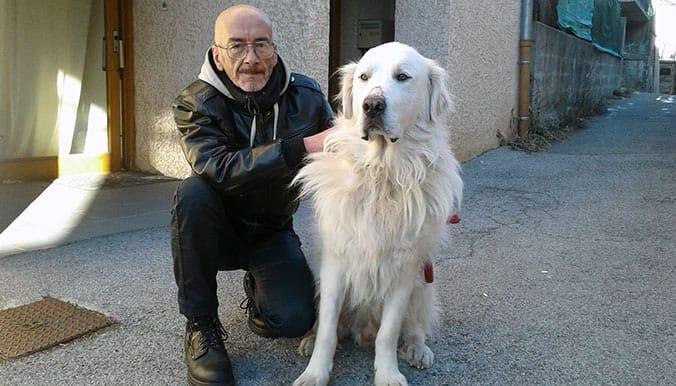 davinci_dog_senior_adoption_2
