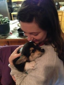 This baby Corgi just wants to cuddle.