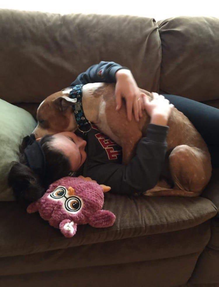 russ_dog_cuddles_adoption_1