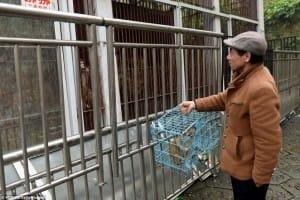 zoo-china-starving-1