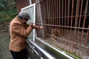 zoo-china-starving-3