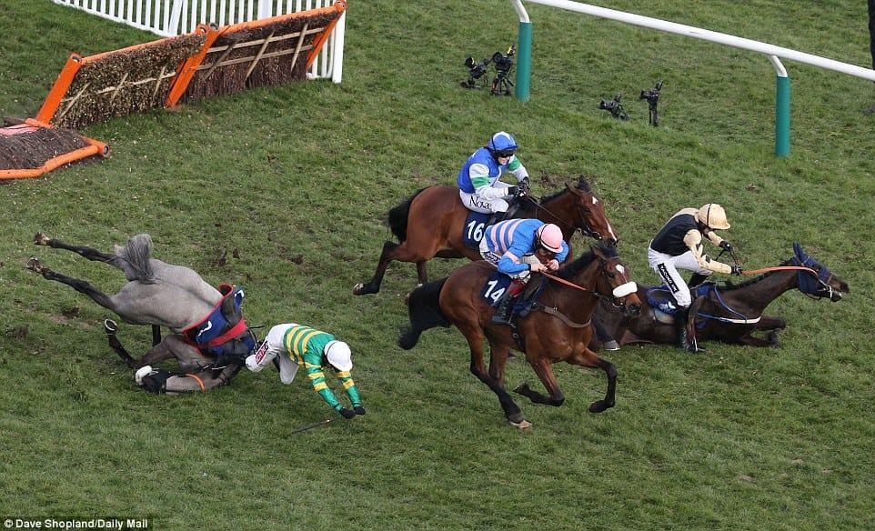horse-racing-cruelty-5