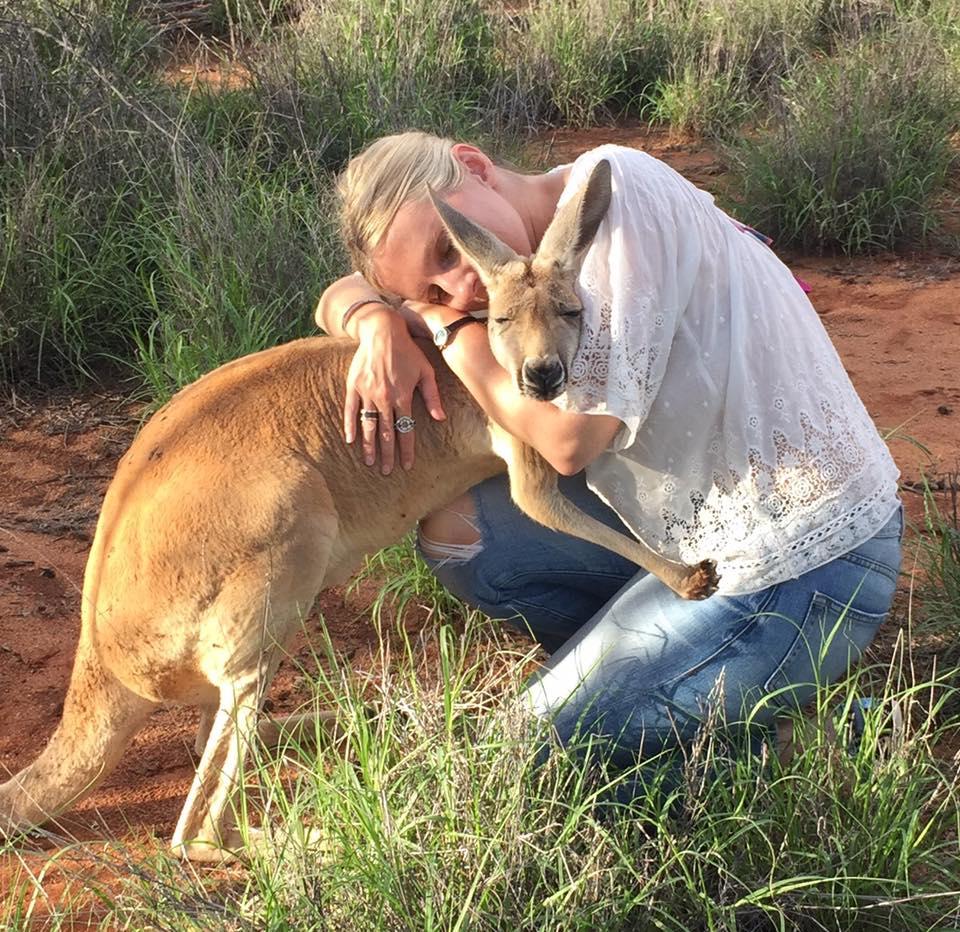 kangaroo-abi-cuddles-1