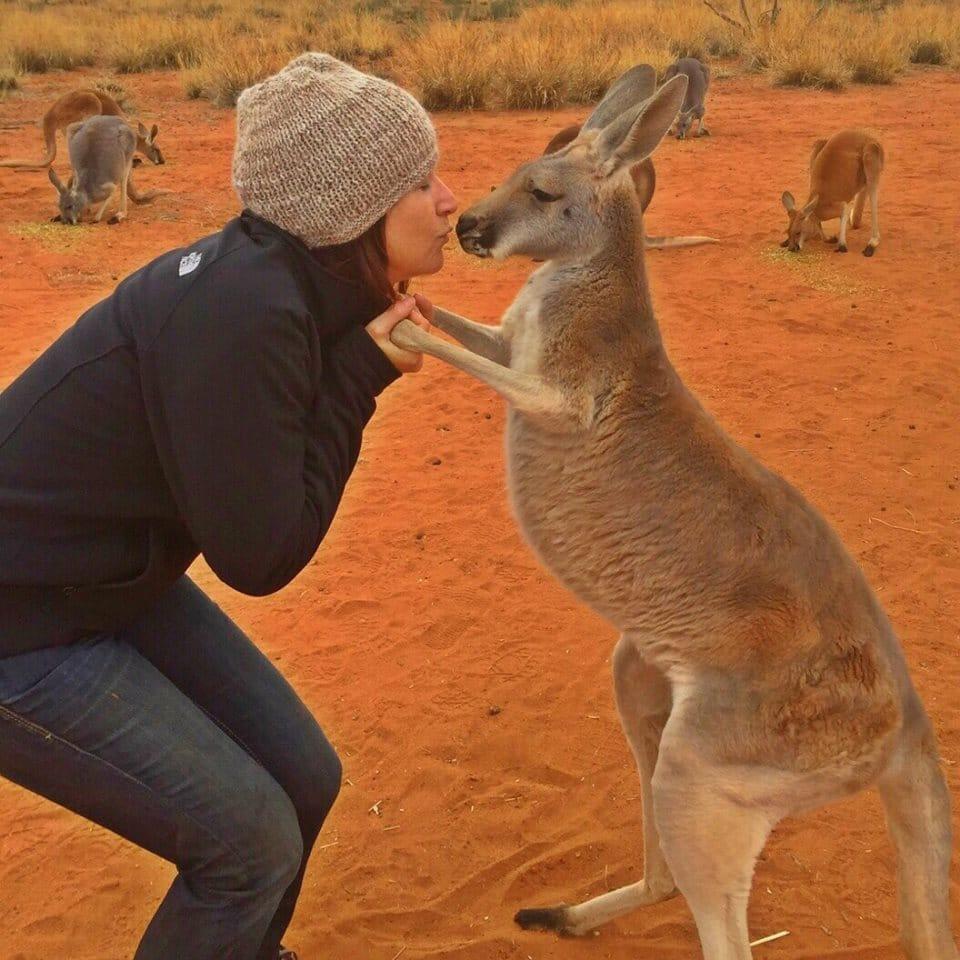 kangaroo-abi-cuddles-4