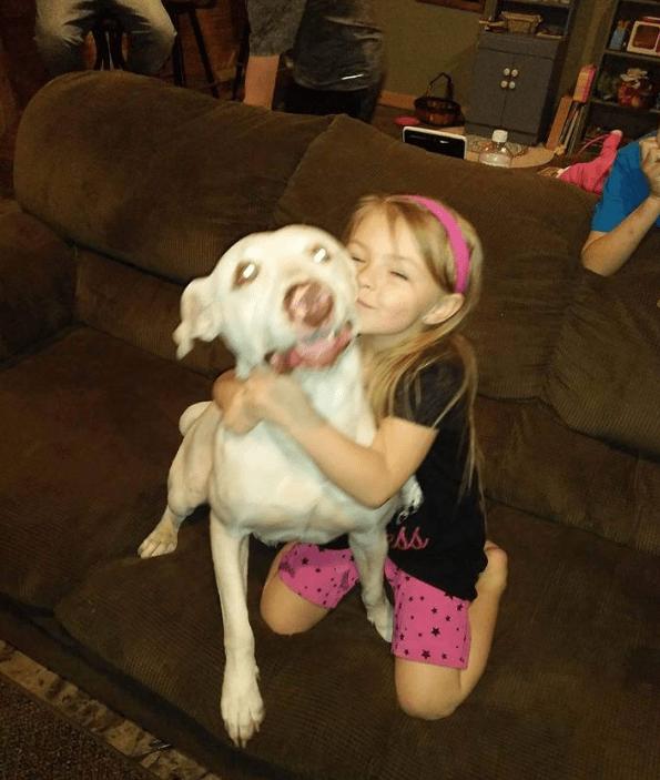 dog-buddy-akron-2