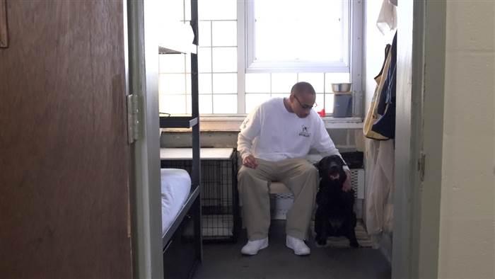inmates_service_dogs_veterans_4