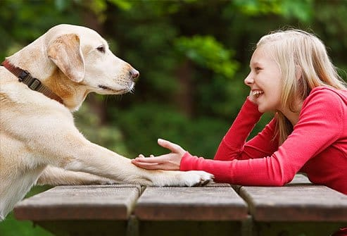 lifestyle-talking-to-pets-1