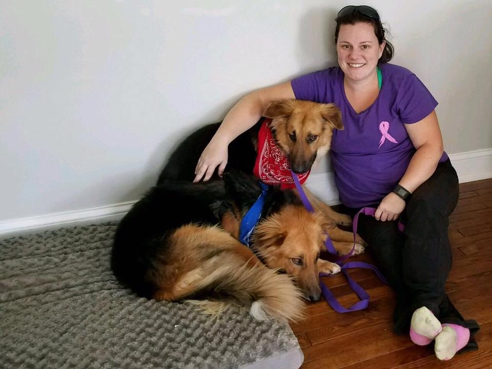 apollo_adonis_dog_pair_rescue_5