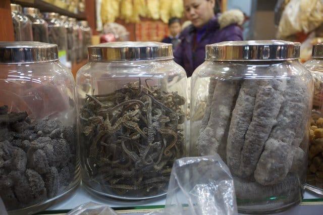 seahorses_medicine_shops_china_3