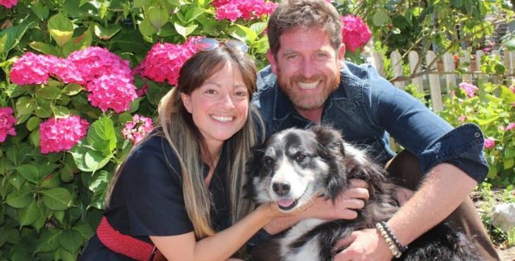 Honfleur : un chien retrouvé à 300 km de chez lui