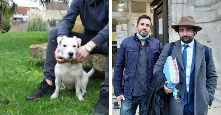 Eure : le vétérinaire accusé de violence relaxé