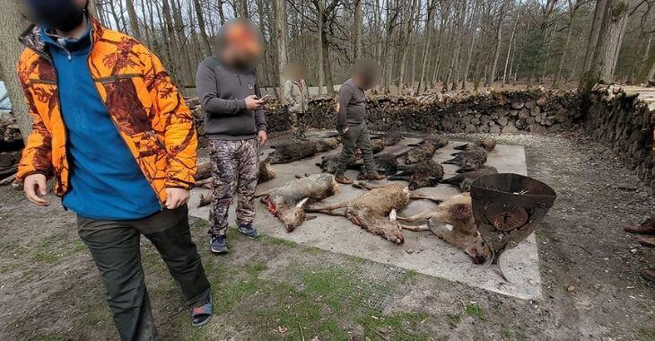 One Voice : enquête sur la chasse en enclos