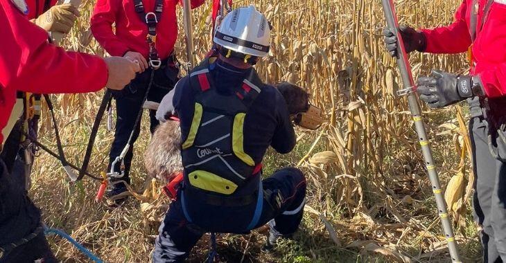 Rhône : un chien fait une chute dans un trou